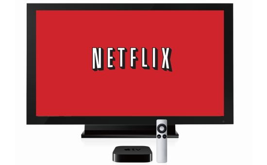 Netflix privacy