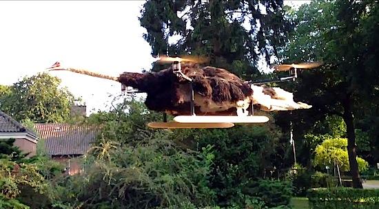 Nederlander maakt quadcopter van dode struisvogel