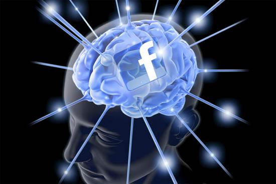 Facebook brein