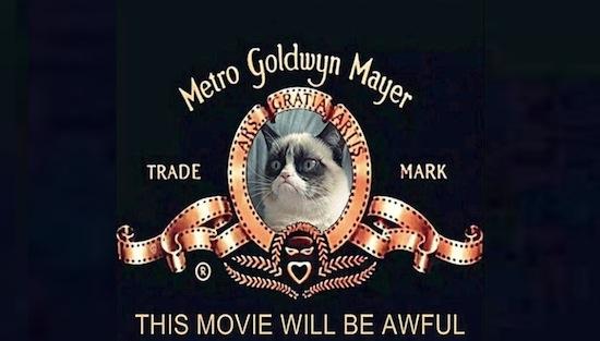 Grumpy Cat sluit filmdeal!