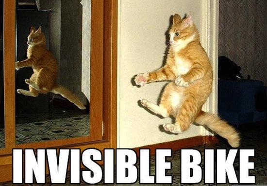 Onzichtbaarheidsglas laat je kat verwdijnen