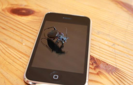 Duidelijk een bug op een iPhone