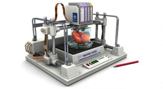3D-organen