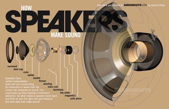 Speaker-Infographic