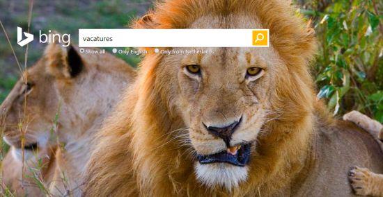 Microsoft zoekt mensen om Bing te verbeteren