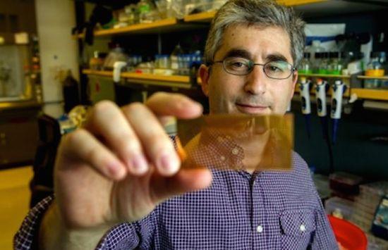Kleine en goedkope chip kan diabetes herkennen
