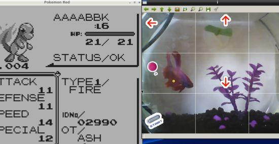 Fish-plays-Pokémon