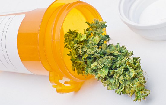 Cannabis in een potje