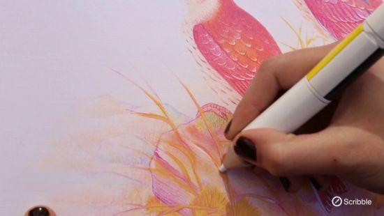 Met de Scribble kan je in 16 miljoen kleuren tekenen