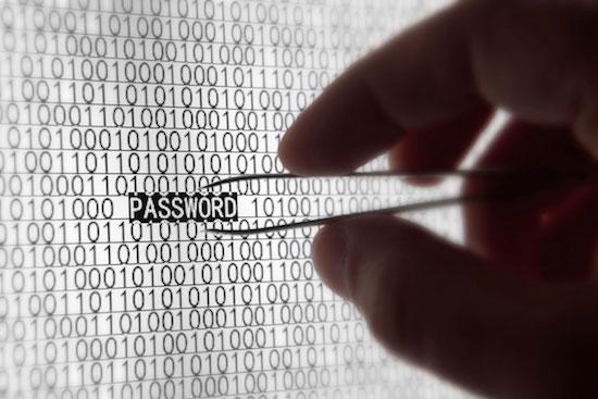 Nederlandse politie helpt FBI met oprollen groot cybercrime netwerk
