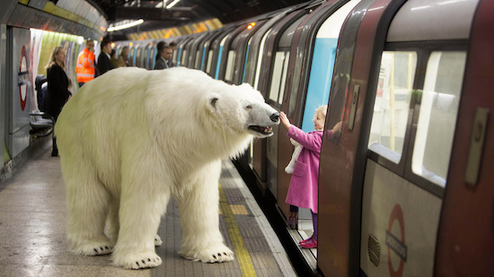 ijsbeer loopt los in Londen