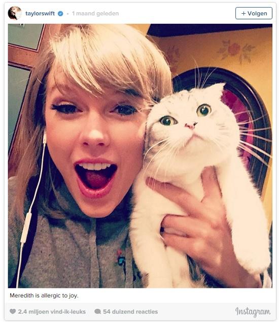 Taylor Kat