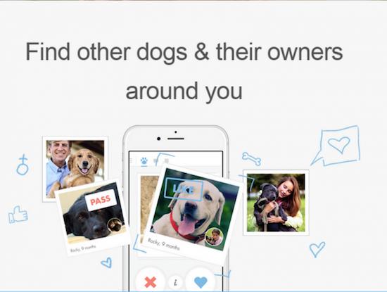 Dating applicatie voor IOS online dating vriendschap