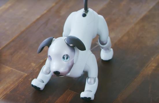 Aibo, de slimme robothond van Sony, is terug