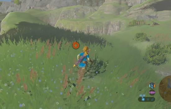 Zelda patch