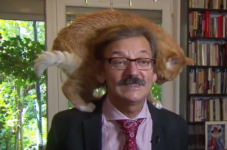 Dit Nederlandse TV-fragment gaat nu viral