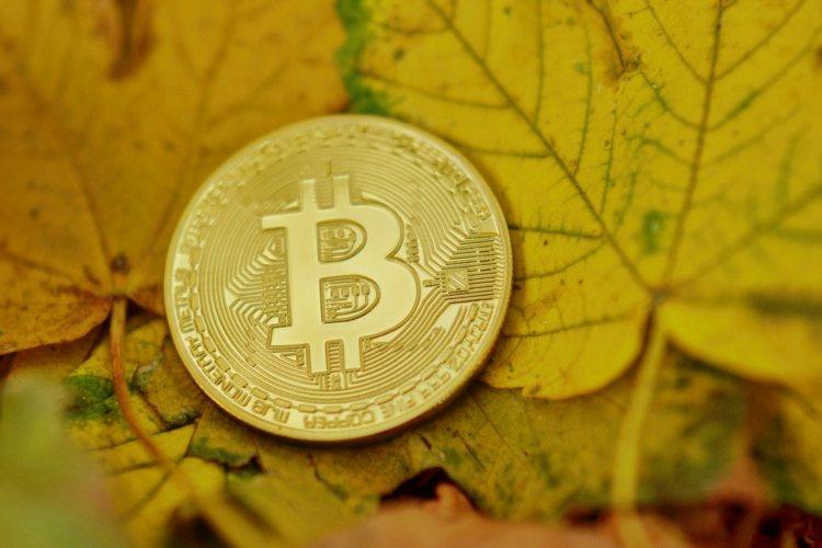 bitcoin-altcoins-herfst-2019