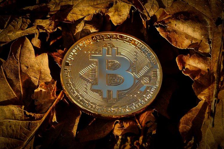 bitcoin-beurflts-mcafee