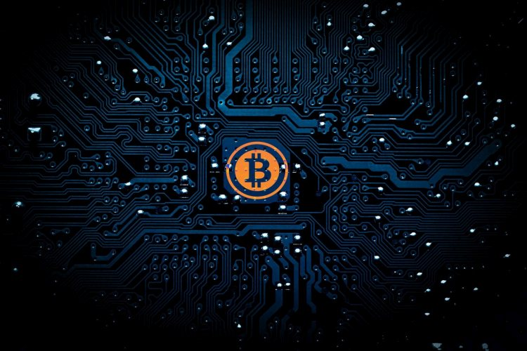 bitcoin-slapende-whales