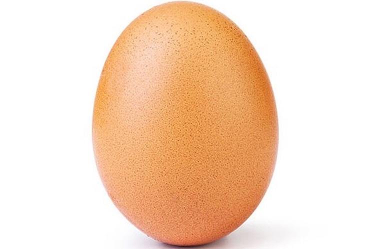 Dit ei is populairder dan Kylie Jenner op het internet